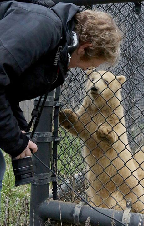 Toledo Zoo 4/4/16