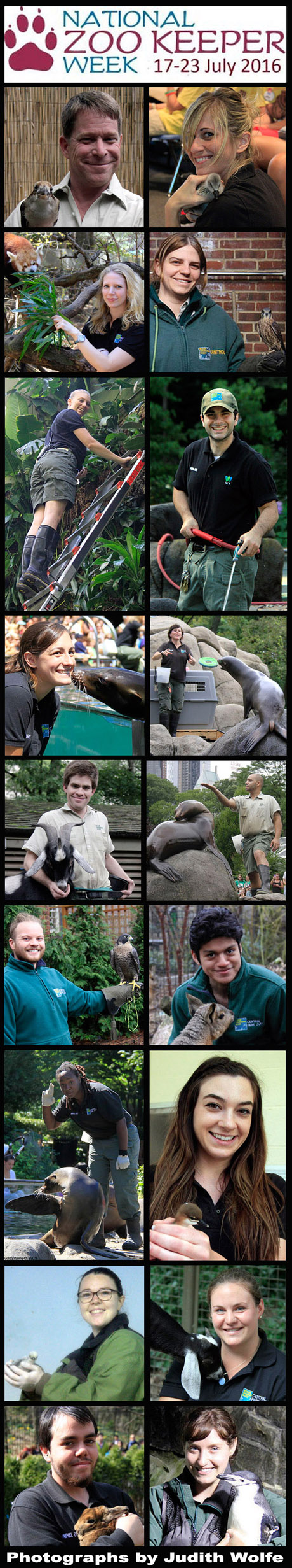 Zoo Keeper Week